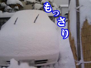 雪かきしなくちゃ!