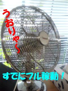 頑張れ扇風機