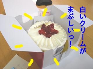 ケーキ・・・(´▽`)