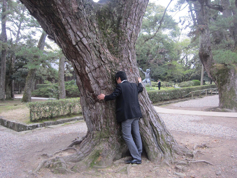 由緒ある?木に祈る・・・