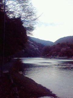 桜景色・・?.jpg