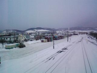 雪の富良野